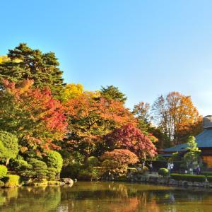 【体験レポ】もみじ公園(山形市東原町)|紅葉の名所で日本庭園を散策