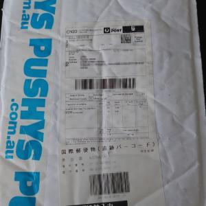 PUSHYSでお買い物 … 未知の海外通販開拓に挑戦!