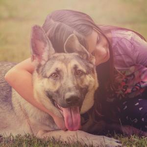 飼い主を命懸けで救った犬「カバン」とは?