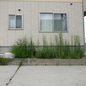 徹底比較!駐車場を新築するなら砂利とコンクリートどっちがいい?