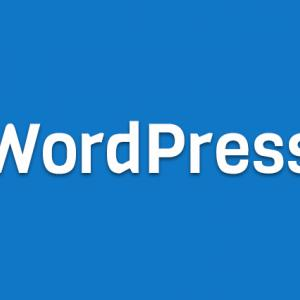 WordPressをプラグインなしでカスタム投稿タイプを作る方法