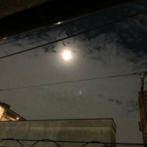 昨日は十五夜、今日は満月