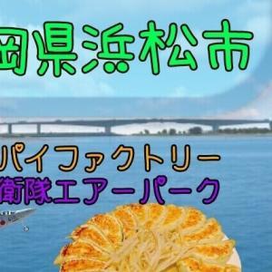 【静岡県浜松市】うなぎなどのグルメや航空機も楽しめる♪浜松の色々を紹介