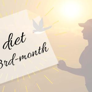 【宅トレ(筋トレ)ダイエット】ユーチューバーから学ぶダイエット法まとめと3か月目の結果も公表。