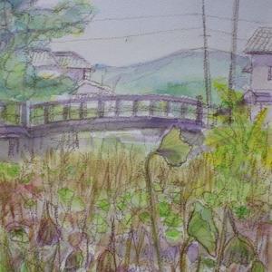 枯れた蓮の池を描く 備中高松城址公園
