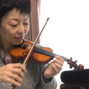 〇分の1のサイズのバイオリン☆かわいい!