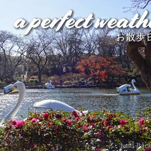 Inokashira Park with zoo and boat @KICHIJOJI