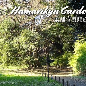 Japanese garden in a good location / Hamarikyu Gardens @SHINBASHI
