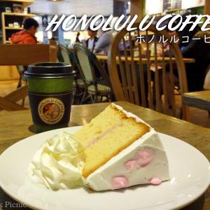 "Enjoying spring ""Sakura Chiffon Cake"" / HONOLULU COFFEE @CHIBA"