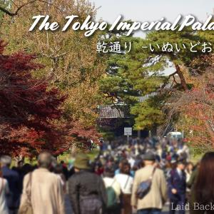 【Autumn leaves】The Imperial Palace was opened to the public / @Imperial Palace