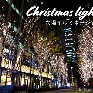 【Christmas Light】Otemachi Nakadori for those in the know @TOKYO STATION