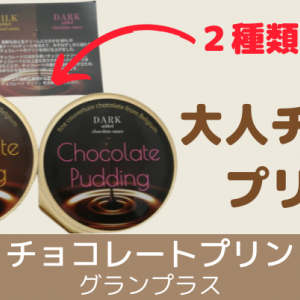 大人の口どけ【チョコレートプリン】2種食べ比べセット!