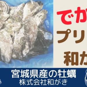 でかっ!プリプリの身にひと目惚れ【和がき 5kg】宮城県産の美味しい牡蠣