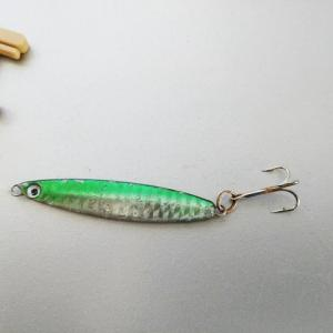 ジグロックをただ巻きして釣れる魚はサバが多い