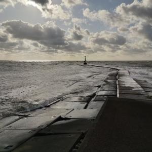 強風の中、車力漁港で釣り サゴシが釣れてる