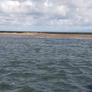 荒ぶる七里長浜港と中泊でシイラがサビキにかかったという話