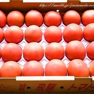 岐阜県産トマトで夏のスタミナおかず♪【トマトのキムチ和えしらすのせ】