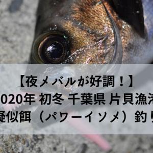 【夜メバルが好調!】2020年 初冬 千葉県片貝漁港で疑似餌(パワーイソメ)釣り