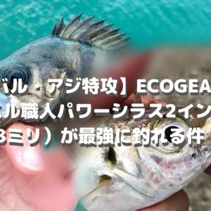 【メバル・アジ超特攻】ECOGEARのメバル職人パワーシラス 2インチ(4.8ミリ)が最強に釣れる件