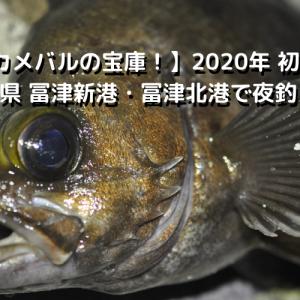 【デカメバルの宝庫!】2020年 初冬 千葉県 冨津新港・冨津北港で夜釣り