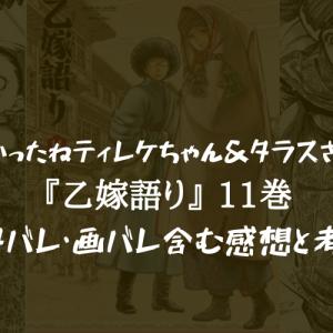 【良かったね巻(?)】乙嫁語り 11巻のネタバレ・画バレ含む感想と考察