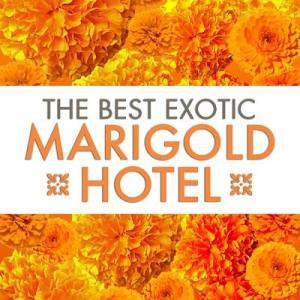 ◆マリーゴールドホテル 2本◆