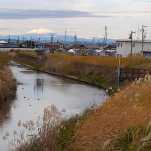 本日の写真 稲沢市へ足を向けました
