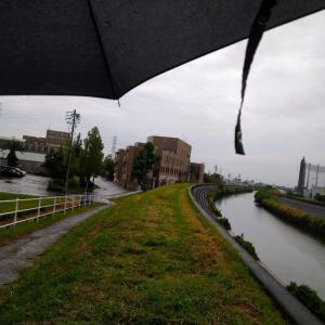 雨の中、傘をさして散策に出かけて