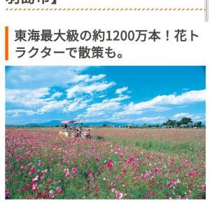 ネット情報を信じて岐阜県羽島市まで行ったものの