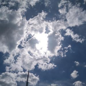 7月29日(木)神田さん第二の人生リロアンメモリアルパーク