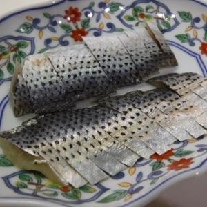 東京湾でコノシロしか釣れないからコノシロを酢締めにして食ったけど私の味覚には合わなかった話