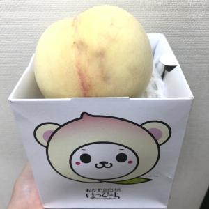 【エッセ岡山グルメ商品当選♪】岡山ばらずしと白桃のおいしい写真載せてみた