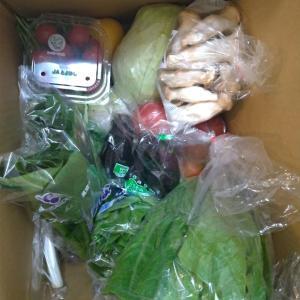野菜が届きました Facebookからお買い物
