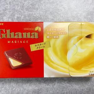 ガーナチョコのカスタードクリーム味が絶品だった