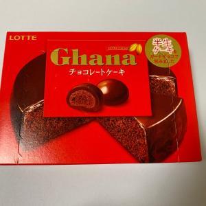 ガーナのチョコレートケーキが美味しくなかった