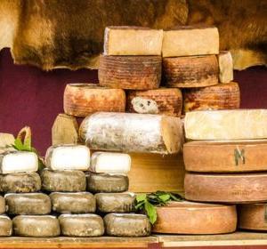 スペインチーズの特徴は?どんな環境で作られているの?