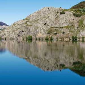 高級スペインワイン~最高峰の赤を大切な記念日にリベラ・デル・デュエロ特集
