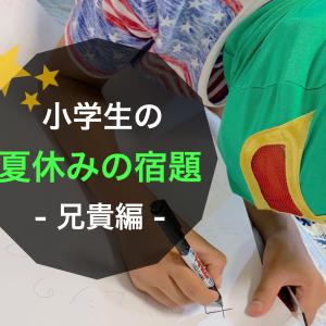 小学生の夏休みの宿題/兄貴編