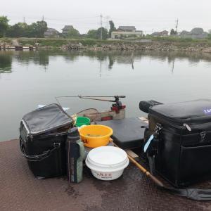 令和2年 6月 4日 筑波流源湖