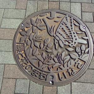 【マンホール蓋】浜松市・旧引佐町①