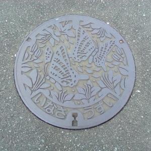 【マンホール蓋】浜松市・旧引佐町②