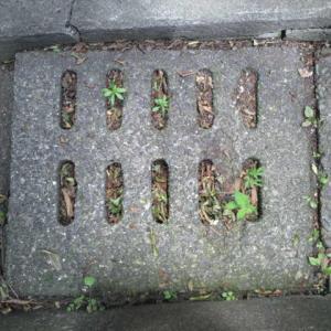 【マンホール蓋】横浜市・側溝㉘