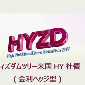 HYZD 海外ETF(高配当)の紹介!