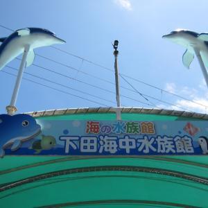 下田海中水族館 写真たくさん! 動画もちょこっとあり