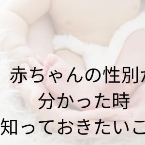 赤ちゃんの性別が判別された時の心境『夫が妻に伝えたいこと』