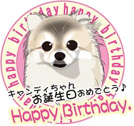 キャンディちゃんお誕生日おめでとう~♪