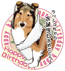 ラッシュちゃんお誕生日おめでとう~(*^^*)♪