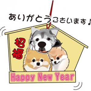 bimaまま素敵な年賀状、本当に有難うございます!