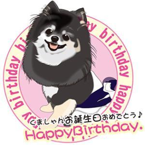 4月8日は、くましゃんのお誕生日だったんですよ~♪