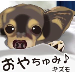 おやちゅみ♪